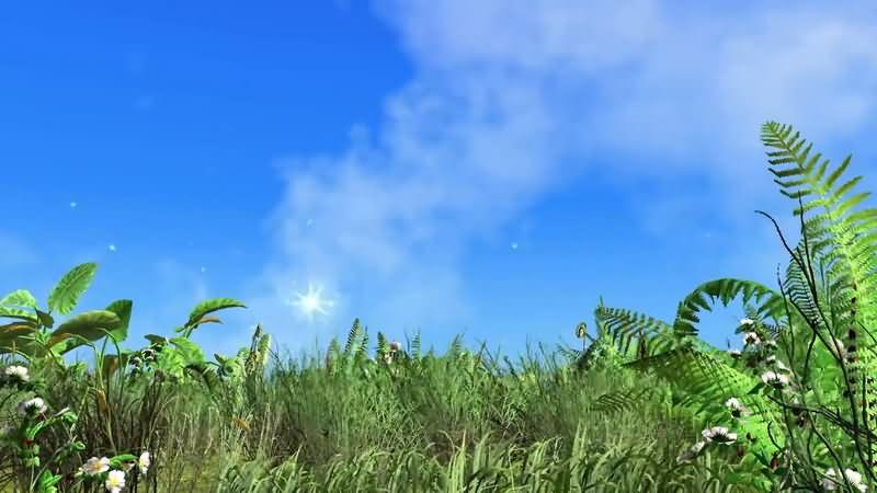 蓝天白云风吹动的草地视频素材
