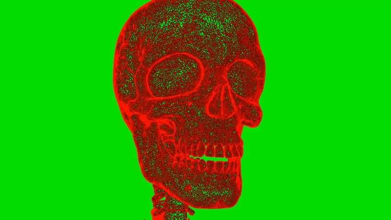 绿屏抠像旋转的红色人体头颅骨骼视频素材