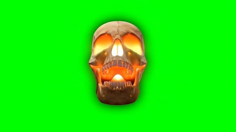 绿幕视频素材骷髅头