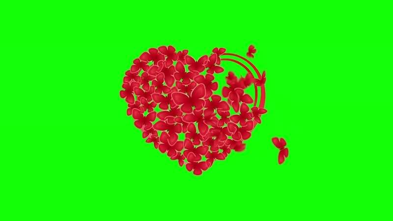 绿幕视频素材蝴蝶爱心