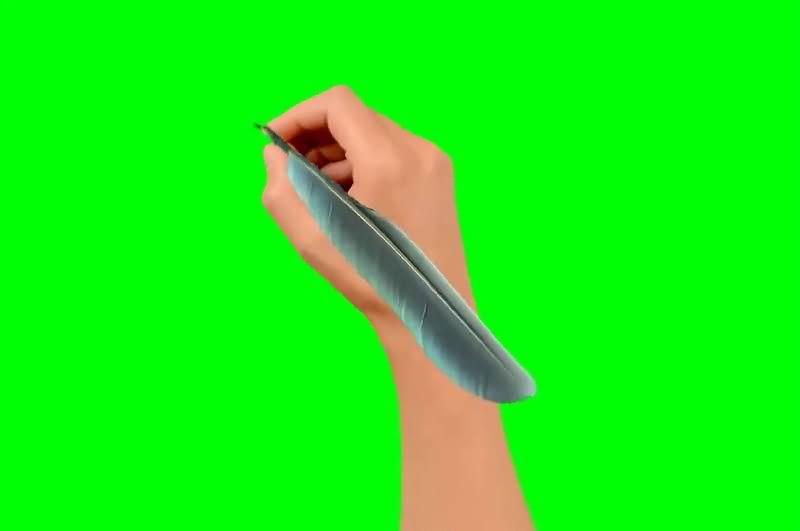 绿幕视频素材羽毛笔