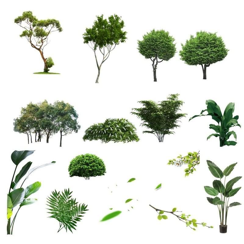 绿植草木免抠分层PSD素材